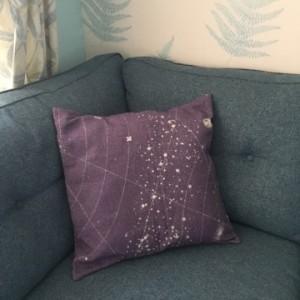 cushion1